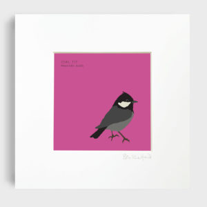 Bex Shelford Irish Bird Prints